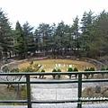 福壽山農場-天池達觀亭 (174)