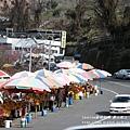 福壽山農場-梨山街道 (7)