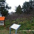 果樹觀察區鴛鴦湖步道 601 (6)