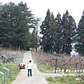 果樹觀察區鴛鴦湖步道 601 (20)