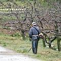 果樹觀察區鴛鴦湖步道 601 (22)