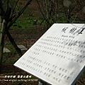 果樹觀察區鴛鴦湖步道 601 (79)