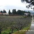 果樹觀察區鴛鴦湖步道 601 (41)