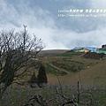 果樹觀察區鴛鴦湖步道 601 (53)