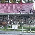 果樹觀察區鴛鴦湖步道 601 (69)