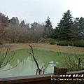 果樹觀察區鴛鴦湖步道 601 (115)