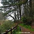 果樹觀察區鴛鴦湖步道 601 (113)