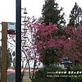 福壽山農場224-1