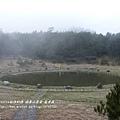 福壽山農場 露營區 (200)