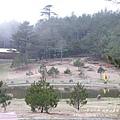 福壽山農場 露營區 (206)