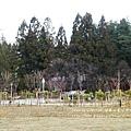 福壽山農場-楓林雅築房間篇 (49)