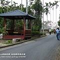 茶香步道 (5)