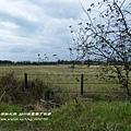 墾丁牧場 (13)