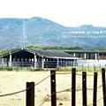 墾丁牧場 (48)