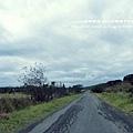 墾丁牧場 (12)