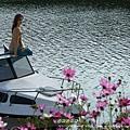 西湖渡假村 195