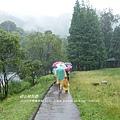 福山植物園046 (19)