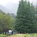 福山植物園046 (15)