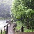 福山植物園046 (31)