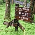 福山植物園046 (39)