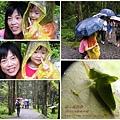 福山植物園046 (041)