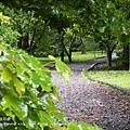 福山植物園046 (77)