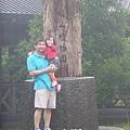 福山植物園046 (158)