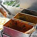 頭城阿伯蔥油餅 (9)