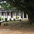 台中東海大學 (73)