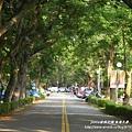 台中東海大學 (78)