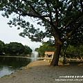 台中東海大學 (97)