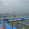 七股遊潟湖 (60)
