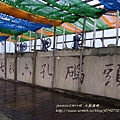 七股遊潟湖 (86)