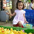 中興兒童公園放風箏 (1)