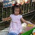 中興兒童公園放風箏 (22)
