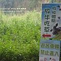 日月山景休閒農場 (95)