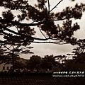 花蓮松園別館 (83)