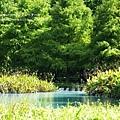 花蓮夢幻湖 (4)