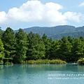 花蓮夢幻湖 (13)