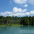 花蓮夢幻湖 (12)