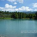 花蓮夢幻湖 (14)