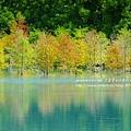 花蓮夢幻湖 (61)