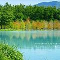 花蓮夢幻湖 (59)