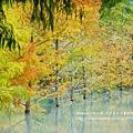 花蓮夢幻湖 (76)