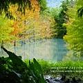 花蓮夢幻湖 (79)