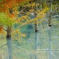 花蓮夢幻湖 (82)