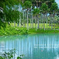 花蓮夢幻湖 (90)