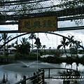 立川魚場 (34)