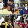 合興附幼鳳凰谷鳥園 (022)