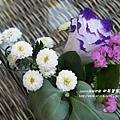 田尾菁芳園 (73)
